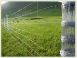 최신 담궈진 직류 전기를 통한 농장 담