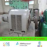 Gerador de turbina da água de Francis/Pelton, Kapan/Turgo
