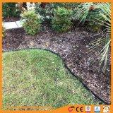 Neuer Typ Farben-Puder-Beschichtung-Garten-Rand