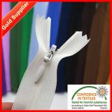 24 horas Serviço Online Ningbo Lace Zipper