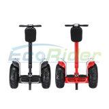 二重電池との電気スクーターの価格のバランスをとっている2つの車輪の自己