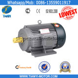 Fujian Tianyi AC Electric Motor for Your Country