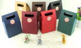 Kraftpapier-Druck-Papier-Einkaufen-Hand beschichtete Kunstdruckpapier-Träger-Verpackungs-Beutel für Mäntel, Wind-Mantel-Staub-, denmantel Klage-Kleiden Frauen-Kleid (F89C)