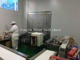 Gewundene schnelle Gefriermaschine Fabrik-Zubehör-China-IQF