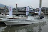 Fiberglas-Sport-Fischerboot-/Geschwindigkeits-Bewegungsboot China-Aqualand 32feet 9.6m/Panga-Boot (320PRO)