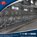 30T/H de la fécula de patata que la planta de procesamiento con el apoyo de la tecnología