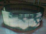 Großhandels-BAD P10 farbenreiche grüne Farbe LED-Bildschirmanzeige