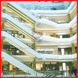 Große Höhen-Innenrolltreppe mit 1000mm Jobstepp-Breite