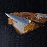 Lame en acier Hitachi Chef Couteau anti rouille