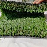 Lo SGS ha approvato il giardino di 35mm che modific il terrenoare l'erba artificiale