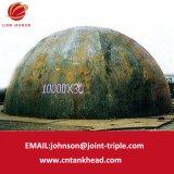 07-12 grande testa emisferica con l'acciaio del ferro per l'estremità 10000mm*30mm del serbatoio