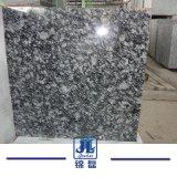 De goedkope Plak van het Graniet van de Nevel Witte voor de Binnenlandse Tegel van de Bevloering/Countertop/van de Trede/van de Voorzijde