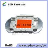 照明LEDチップ30-100W完全なスペクトル380-840nmを育てなさい