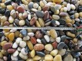 il nero di 2-3cm ha lucidato una pietra &Pebble del ciottolo naturale