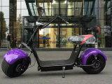 2017 scooter de 1000W Woqu X1 Citycoco Scrooser avec Bluetooth