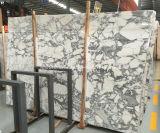 Китай Белый Arabescato Vagli на заводе полированными мраморными плитками