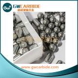 Teclas do carboneto e inserções de bits giratórios da percussão
