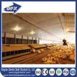 Camera d'alimentazione prefabbricata più a basso costo dell'azienda agricola di pollo