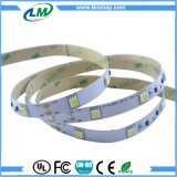 7.2W SMD5050 konstantes Band flexibles LED des Bargeldes LED Streifen-Licht