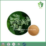 Выдержка лозы бога грома 100% естественная Anti-Inflammatory Triptolide 98%