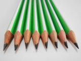 Lápis do estudante do lápis do HB do lápis