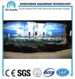 Globo material de acrílico de los pescados del proyecto del acuario