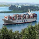 바랑키야, 콜롬비아에 Professional Sea Shipping Company