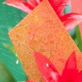 Strato del policarbonato impresso materiale del compratore della garanzia da 10 anni