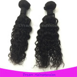 Großhandelspreis-Jackson-Wellen-Jungfrau-Brasilianer-Haar