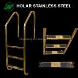 ステンレス鋼のプールの梯子
