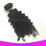 加工されていなく自然なオリジナルほとんどの普及したインドのバージンの毛のねじれた巻き毛