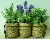 Artificial Mixed Herbs en bolsa de lino / papel con soporte de metal para el hogar / Oficina de decoración