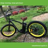 Energía verde La grasa Cruiser bicicleta eléctrica con Ce aprobó