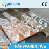 Macchina trasparente del ghiaccio in pani per i pesci in Indonesia