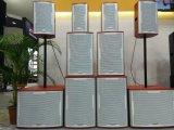15 인치 백색 색깔 (TK15 - 재치)를 가진 직업적인 오디오 지면 모니터 스피커
