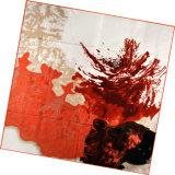 Sciarpa della saia della signora Fashion Printed Square Silk (DS13-01)