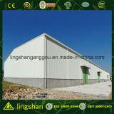 Entrepôt de construction en acier pré-ingénieur (LS-SS-554)