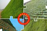 Vegetatieve Zak van de Zak van de Zandzak van Geobag de Beschermende