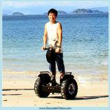 中国再充電可能な李イオン電池の電気スクーター