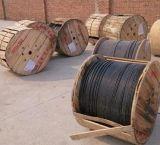 Todos los Cable Óptico dieléctrico Self-Supporting