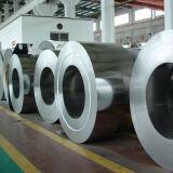 304 / 316L / 309L / 310S inoxidable bobinas de acero con alta calidad