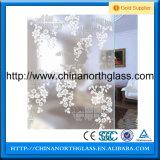 Portes de placard coulissant en verre givré