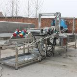 Lavagem de mirtilo comercial e máquina de desidratação