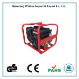 """Pompa della Cina Chongqing 3 """" con Ce GS e EPA approvati"""