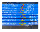 Coalbed 메탄 Downhole 나선식 펌프 또는 Pcp