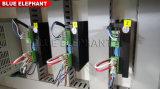 Kleine beste CNC-Fräser-Maschine, CNC-Fräser 1212 mit DSP Controller bekanntmachend
