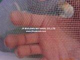 De nylon Plastic Klamboe van het Netwerk