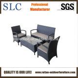 Sofà impostato/moderno del sofà del rattan di promozione del giardino (SC-A7428)
