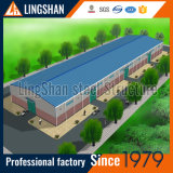 De Bouw van de Fabriek van het Frame van het staal/Afgeworpen/Pakhuis/Workshop