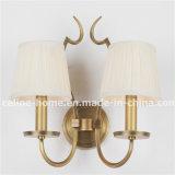 Una lampada decorativa chiara moderna (SL2016-1W)